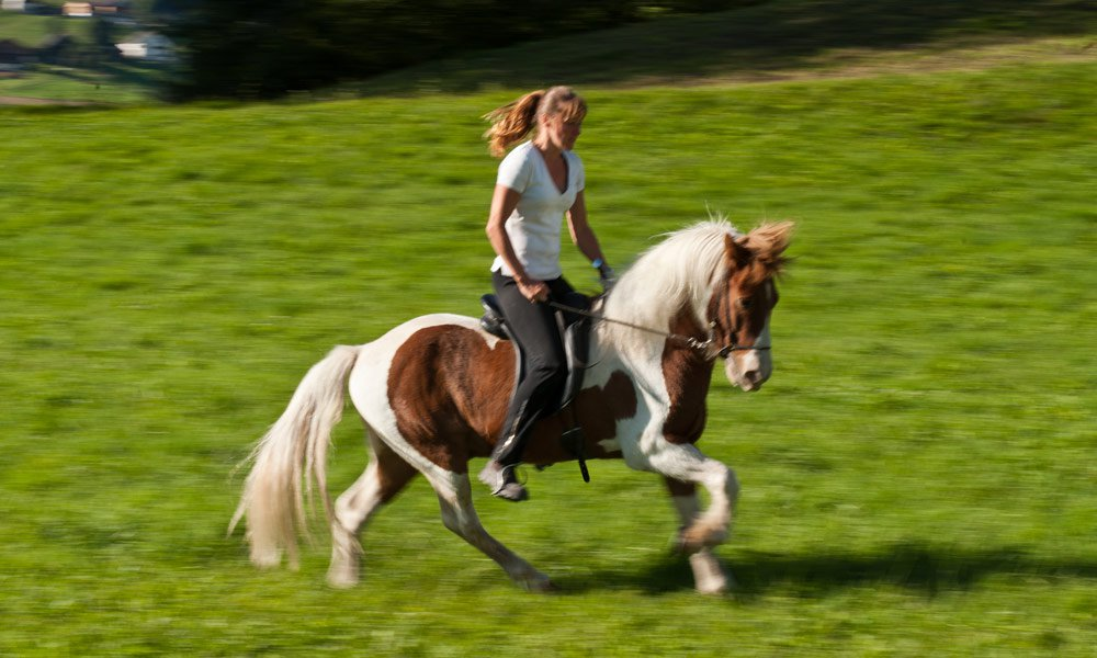 Book one of our riding packages