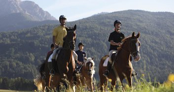 Hotel Wiedenhofer / Terento in the Pustertal Riding holidays