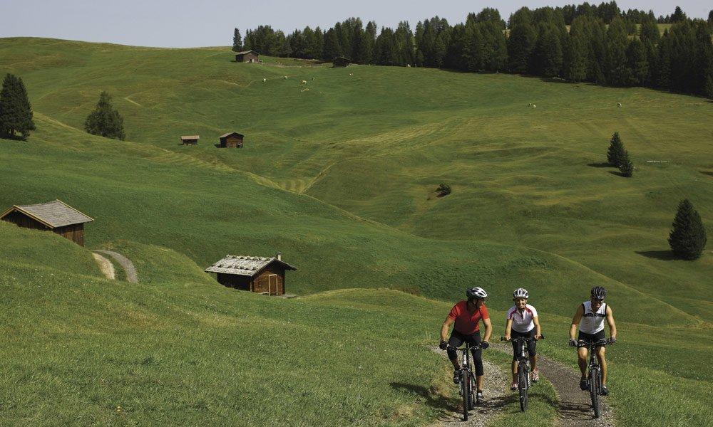 Various cycling tours